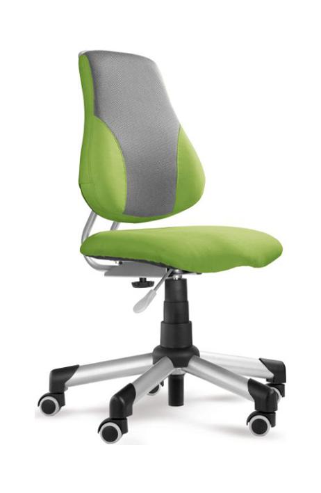 MAYER dětská rostoucí židle 2428 Actikid A2 43